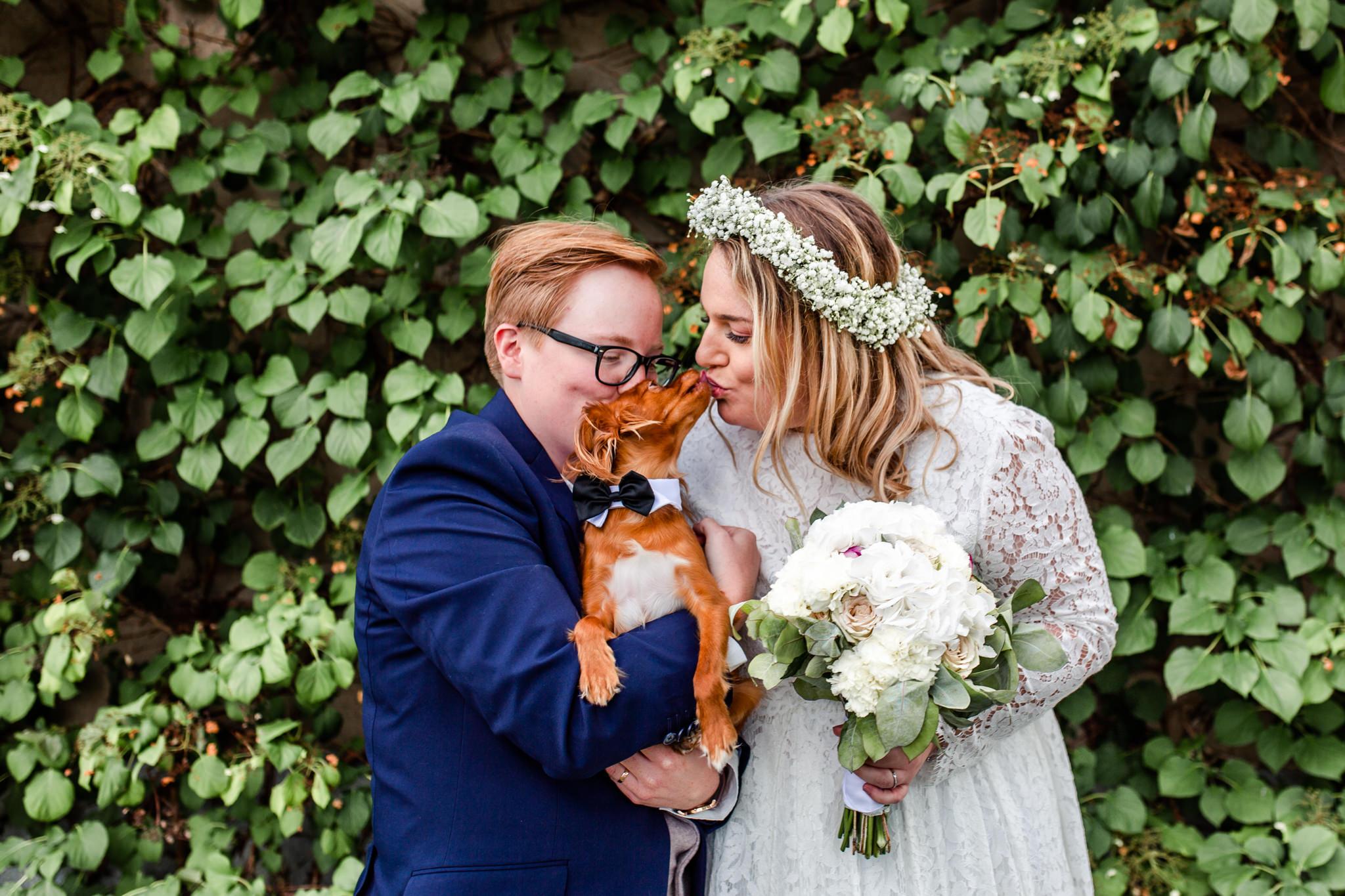 Bröllopsfoto med hund som ringbärare